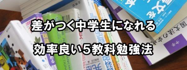 中学生 5教科 勉強