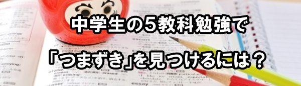 勉強方法 中学生 5教科