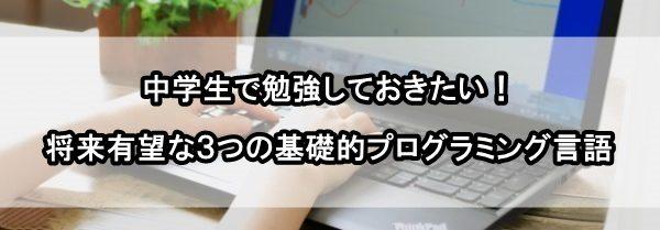 中学生 プログラミング言語